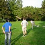 Sport1 fizikai erőnlét - csapatépítő